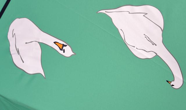 白鳥より_W640